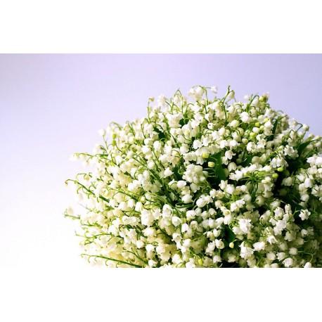 Aroma Ambiental Natural MUGUET
